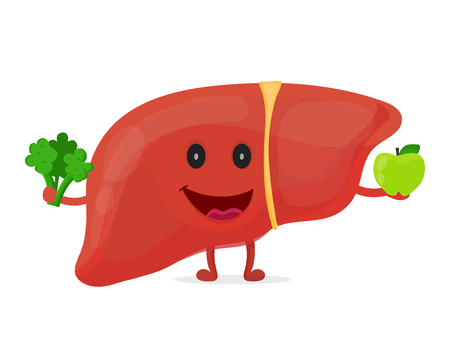 Strong healthy happy liver character. Vectores