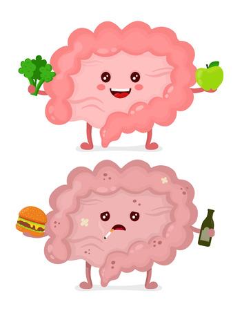 Trauriger ungesunder kranker Darm mit Flasche Alkohol, Zigarette und Burger. Glücklicher, gesunder Darm.