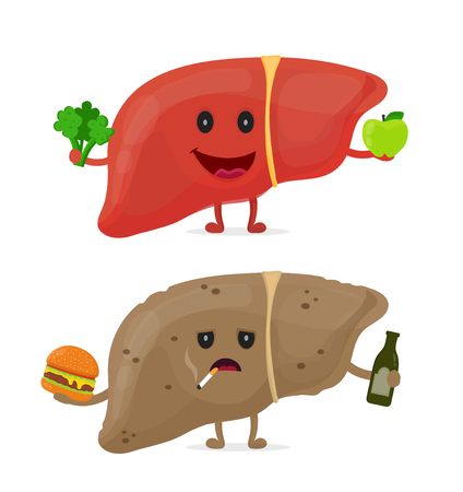 Sad unhealthy sick liver with bottle of alcohol, cigarette, and burger. And strong healthy happy liver. Stock Illustratie