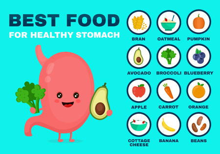 Best food for strong stomach.Strong healthy stomach character. Vector flat cartoon illustration icon. Illustration