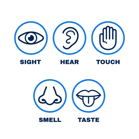 Line icon set of five human senses. Vision, hearing, smell, touch, taste. Vector flat line illustration icon design.Human nose, eye, hand, ear, mouth senses concept