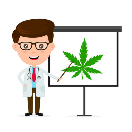 Happy smiling doctor. flat cartoon character modern style illustration icon drawing, Making presentation about marijuana weed on a white board. Doctor medicine presentation concept. Medical marijuana