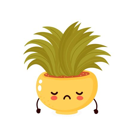 Cute happy smiling plant in pot. Vector flat cartoon illustration icon design. Isolated on white background. Plant in pot,houseplant  concept