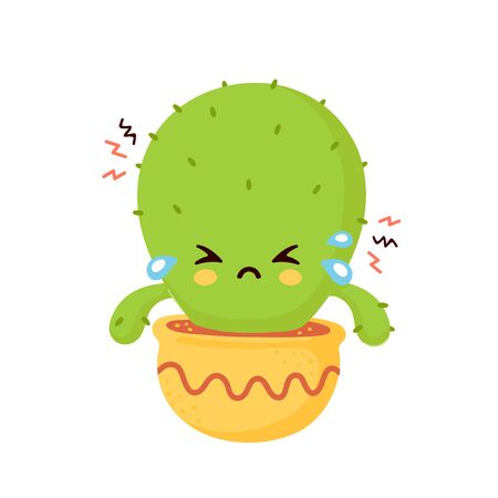 Cute sad cry dried cactus. Vector flat cartoon illustration icon design. Isolated on white background. Cactus in pot concept Illustration