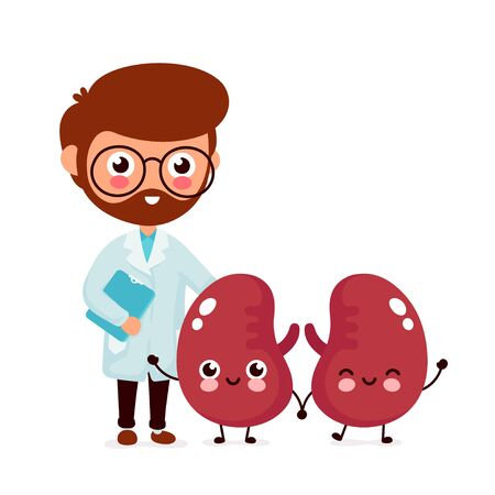 Cute funny smiling doctor nephrologist and healthy happy kidneys. Healthcare,medical help. Vector flat cartoon character icon design. Isolated on white background. Doctor and kidneys friends concept