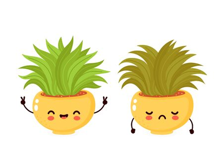 Cute happy smiling  and sad dried plant. Vector flat cartoon illustration icon design. Isolated on white background. Strong healthy plant character concept