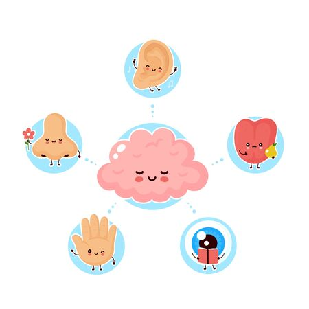 Cute happy five human senses surrounding brain. Vision, hearing, smell, touch, taste. Vector flat illustration icon design.Human cute nose, eye, hand, ear, tongue senses poster concept