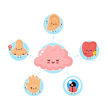 Lindos cinco sentidos humanos felices que rodean el cerebro. Visión, oído, olfato, tacto, gusto. Diseño de icono de ilustración plana de vector.Nariz linda humana, ojo, mano, oído, concepto de cartel de los sentidos de la lengua