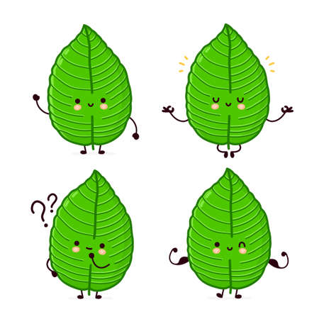 Cute funny kratom leaf character set collection. Vector flat line cartoon kawaii character illustration icon. Isolated on white background. Kratom leaf character bundle concept 矢量图像