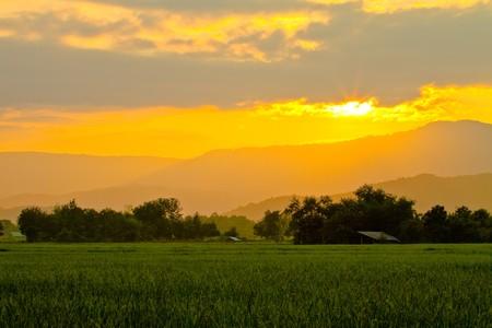 Sun Confidential blue field. Stock Photo - 8101004