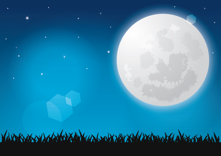 Beautiful full moon, Shining stars and Silhouettes grass at night Vector