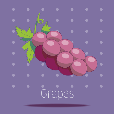 viticulture: A bunch of grapes  Hand-Drawn style