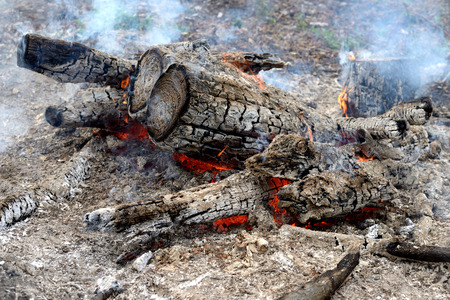 smolder: Logs in the fire