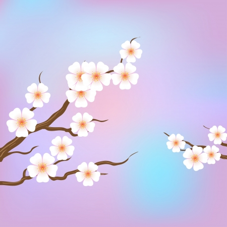 Spring border background with pink blossom Vector
