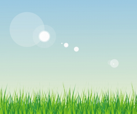 Horizontally Seamless Green Grass Banner Against the blue sky Vector