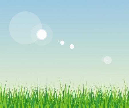 Horizontally Seamless Green Grass Banner Against the blue sky