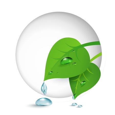 Vector illustratie van ecologisch concept pictogram met groene bladeren