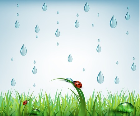 Nature spring background with grass and water drops Vector