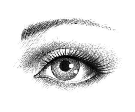eye drawing: Human eye - vector illustration Illustration