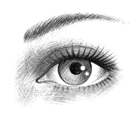 Beautiful woman eye. Illustration