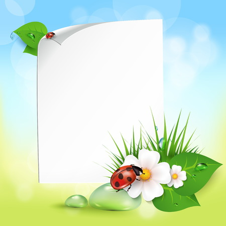 dew: Note with leaves, drops of dew, ladybird and flowers. EPS10 vector.
