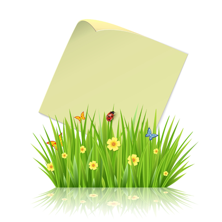 sheet of paper: Fresh spring green grass leaves frame template with curling  blank sheet paper design vector illustration Illustration