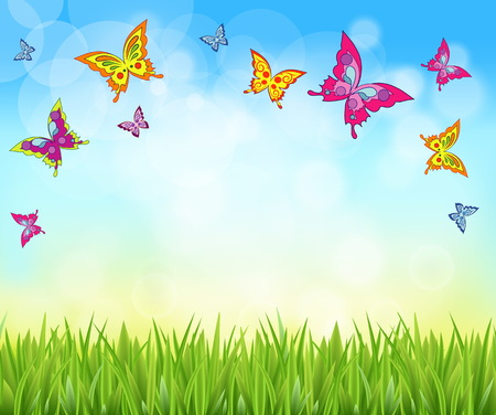 Nice shiny fresh butterfly grass lawn background with sky. Nature spring summer backgrounds.