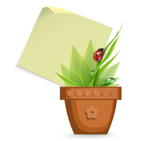 peat: Pot With Grass, Isolated On White Background, Vector Illustration