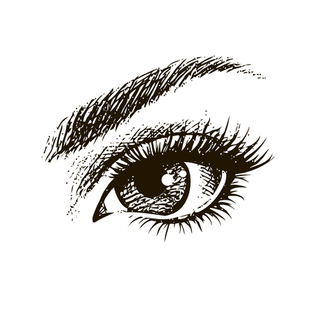 Hand-drawn beautiful female eye. Illustration