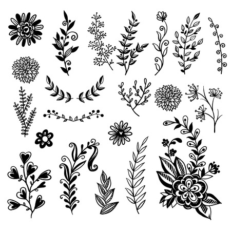 A set of hand-drawn plants. Doodle plants in retro style. Vector illustration