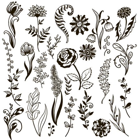 Big set of flowers and herbs. Vector collection leaf. Hand Drawn vintage floral elements. Universal templates collection for trendy design. Illusztráció