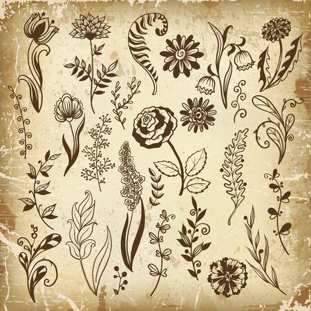 Collection of hand drawn flowers and plants, vector illustrations in sketch style. Ilustração