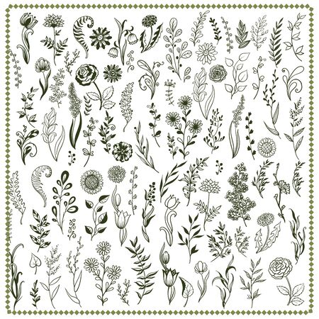 Big collection with branches, flowers and herbs with leaves. Set of hand drawn vector decorative elements for your design.