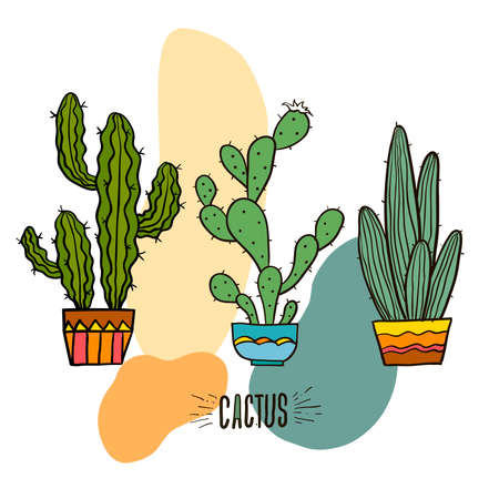 Cactus decorative home plant in pots vector icons. Cactus flower flower, flower pot green and houseplant illustration on white