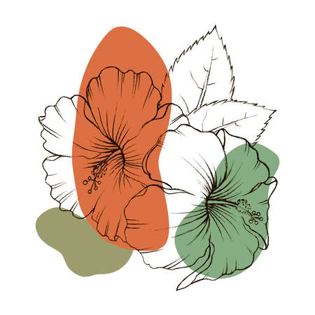 A bouquet of tropical Hibiscus flowers. Hand drawn sketch. Texture background watercolor effect. Vector illustration isolated on white background. A template for the design.