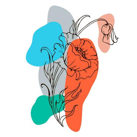 drawing flowers. poppy flower clip-art or illustration. Illustration