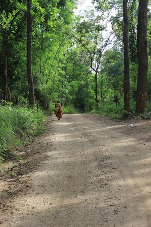 monnik wandelen in het bos in Maetala Valley.
