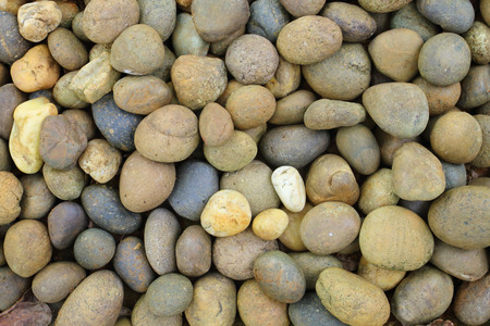 decorate: Walkside decorate with oval stone.