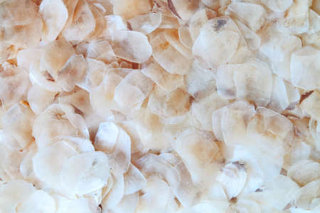dry fish: image of dry fish scale