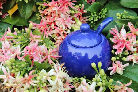 putting in: blue ingredient pot putting in flower bush Stock Photo