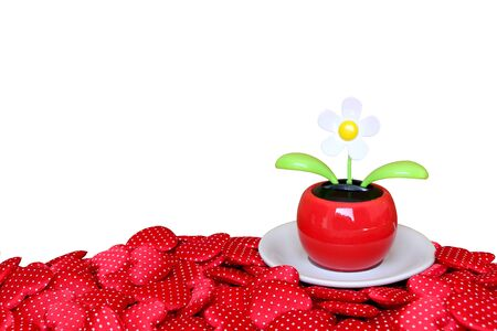 flower pot on pile of heart ,isolated white background and saved clipping path
