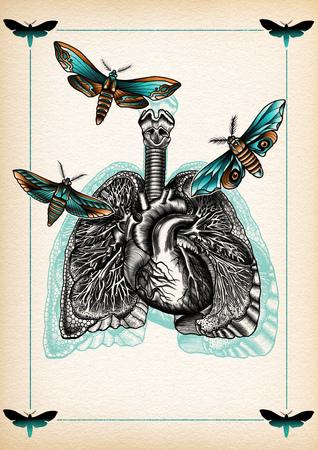 illustration tattoo lugs moth
