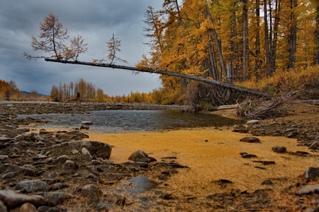 Russia. far East. The colors of autumn are the cold-water rivers of Magadan.