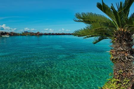 East Malaysia. Reef of Mabul island