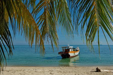 East Malaysia. Reef of Mabul island 스톡 콘텐츠 - 116231768