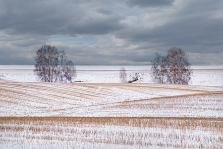 Russia. The last snow-dusted farm field of Kuzbass. Stock Photo
