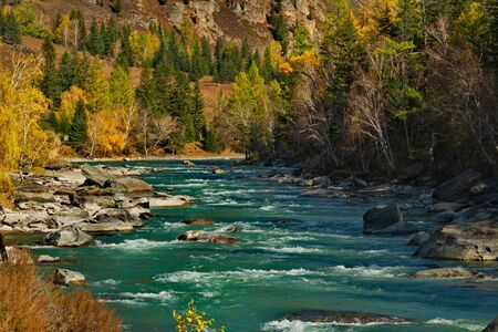 Russia. The South Of Western Siberia. Late autumn in the Altai mountains, the Katun river