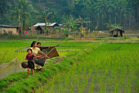 Gauhati. Eastern India. February 11, 2016. Three village girls go fishing in a rice field with wicker nets in their hands. They catch very small fish in the water of rice fields.