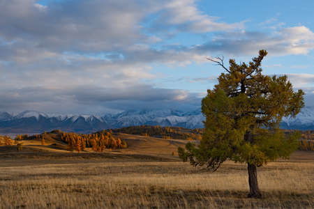Russia. Mountain Altai. Desert steppes at the foot of the North Chui mountain range along the Chui tract.