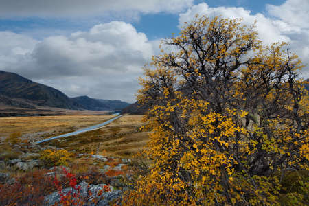 Russia. South Of Western Siberia. mountain Altai. Autumn colors of mountain valleys along the Chui tract.